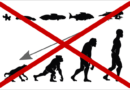 Introduction to Evolution – Part 2: Common Misconceptions