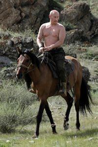 Vladimir Putin shirtless on a horse