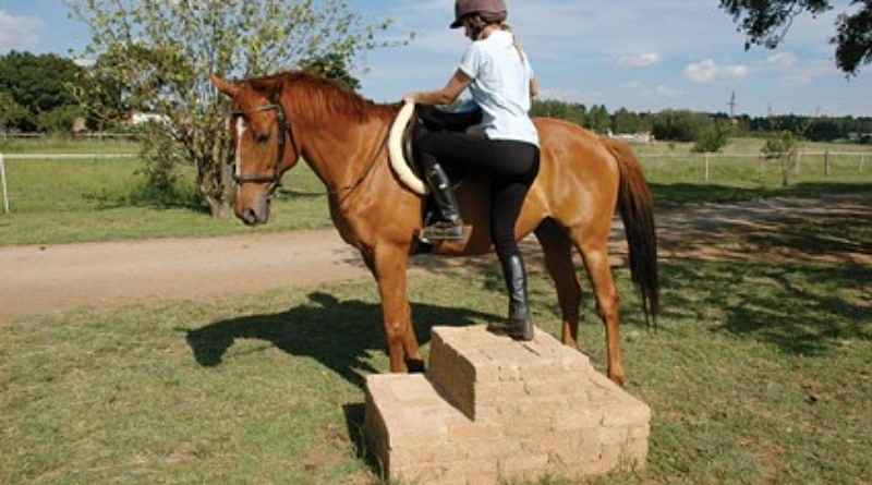 mounting a horse from a mounting block