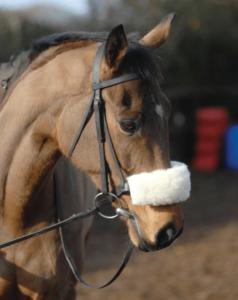 sheepskin noseband
