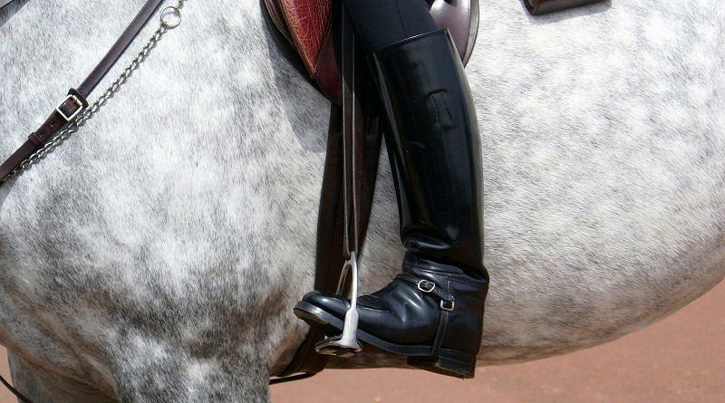 a horse rider's leg