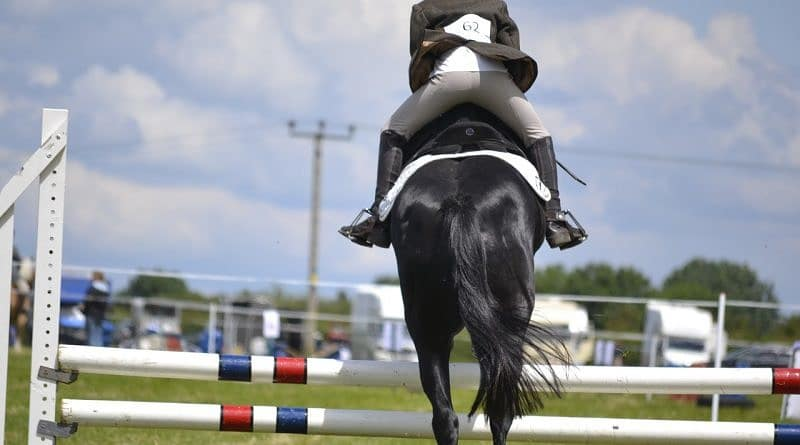 Dressage for Jumping – Part 2