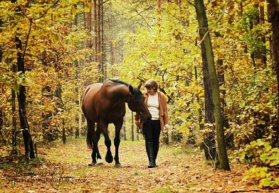 horse and human walking through the woods in autumn