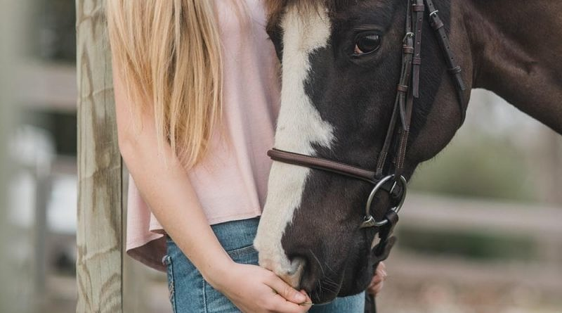 dark horse wearing a bridle with girl in pink top and jeans