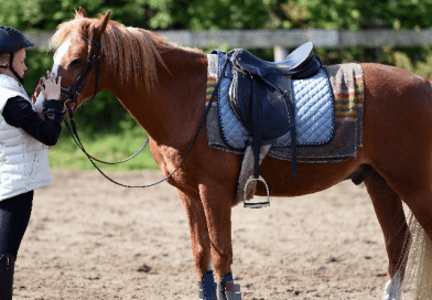 girl standing with tacked up chestnut pony